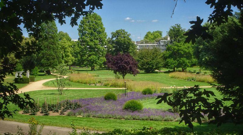 24 Dahliengarten