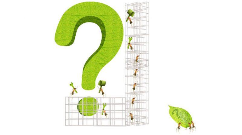 Fragen zur Gartenschau