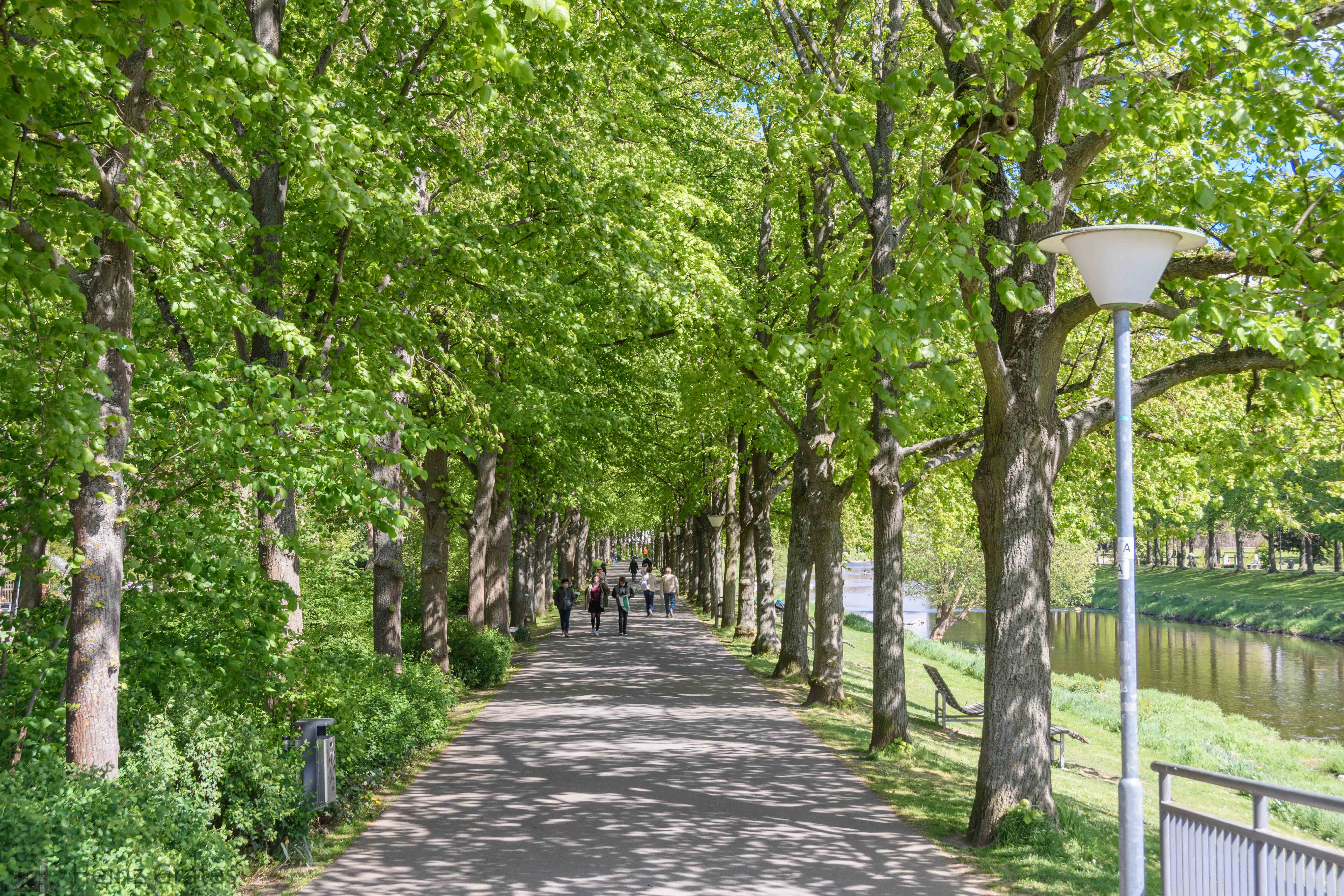 Kaiserin-Auguste-Viktoria-Park