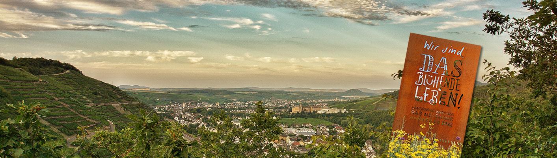 Landesgartenschau 2022